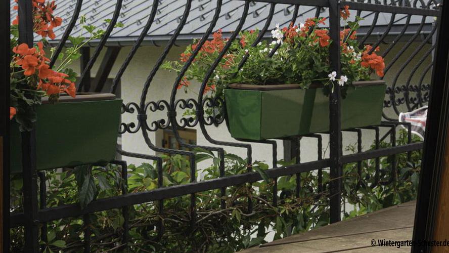 Blick durch Fliegengitter auf Terrasse
